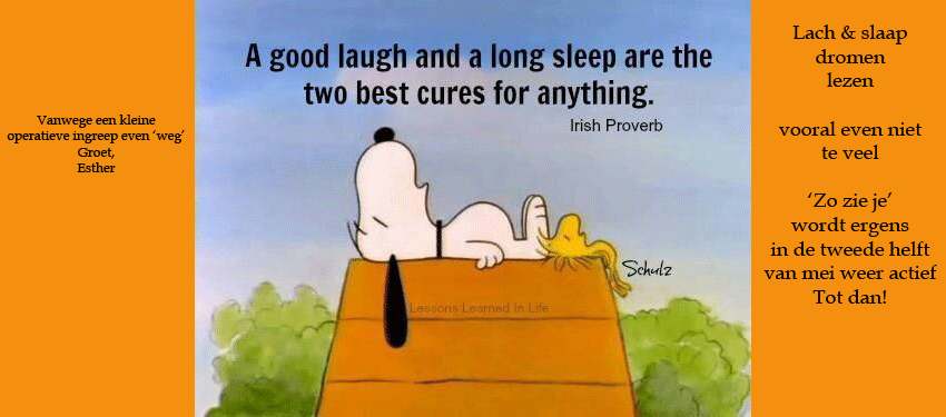 FBT Snoopy- the best cure